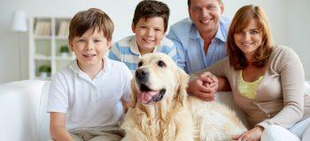 Her er alle søde hunde velkomne